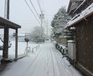 積雪(名古屋)